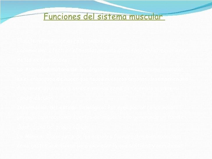 Funciones del sistema muscular  El sistema muscular es responsable de: Locomoción:  Efectuar el desplazamiento de la sangr...