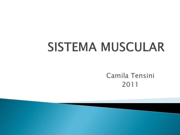 Camila Tensini   2011
