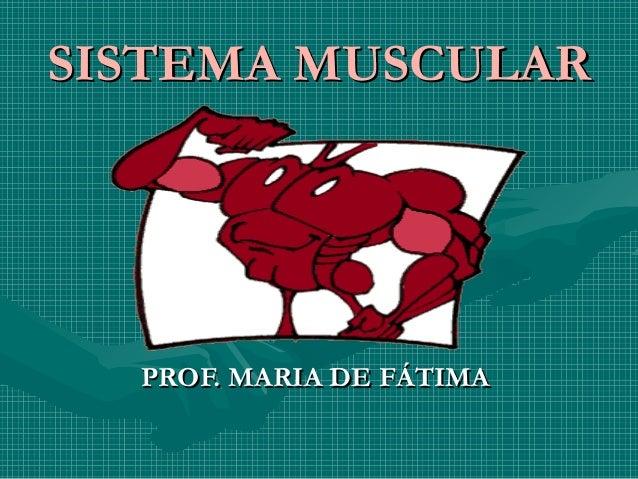 SISTEMA MUSCULARSISTEMA MUSCULAR PROF. MARIA DE FÁTIMAPROF. MARIA DE FÁTIMA