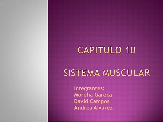 Integrantes: Morelia Gareca David Campos Andrea Alvarez