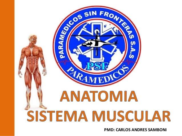 PMD: CARLOS ANDRES SAMBONI