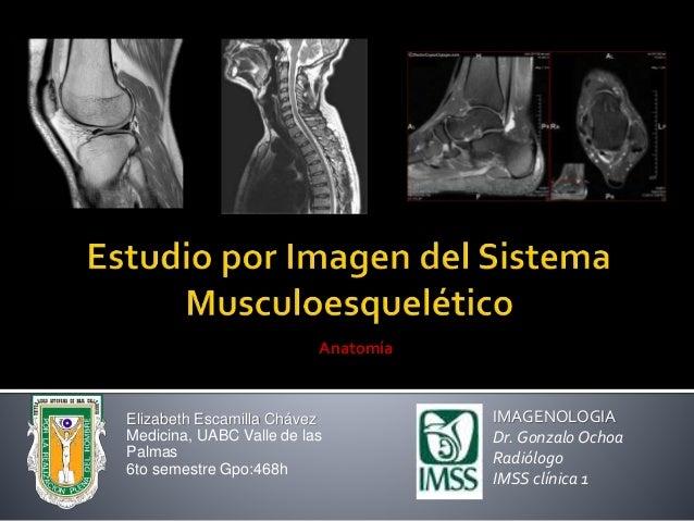 Elizabeth Escamilla Chávez Medicina, UABC Valle de las Palmas 6to semestre Gpo:468h IMAGENOLOGIA Dr. Gonzalo Ochoa Radiólo...