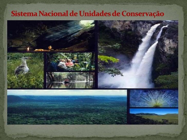 Sistema Nacional de Unidades de Conservação<br />