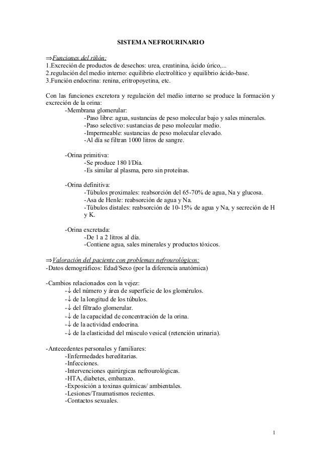 SISTEMA NEFROURINARIO⇒Funciones del riñón:1.Excreción de productos de desechos: urea, creatinina, ácido úrico,...2.regulac...