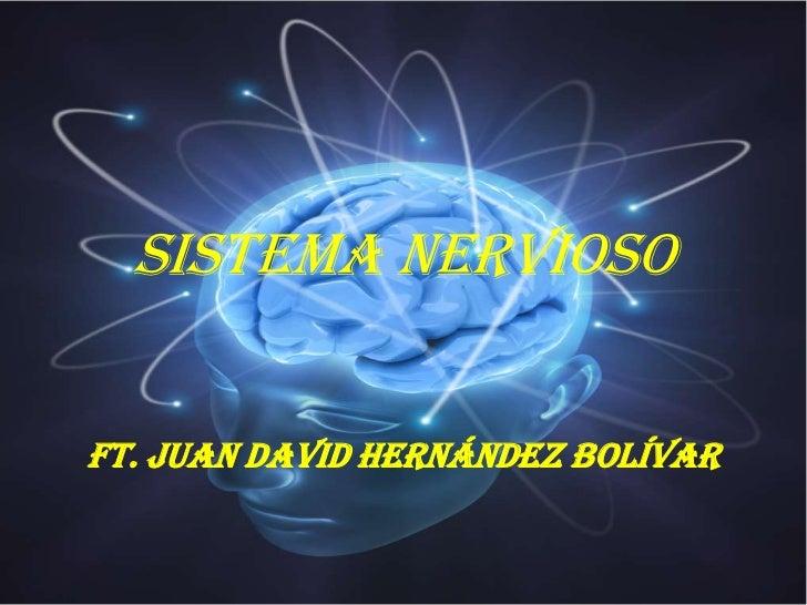 SISTEMA NERVIOSOFT. JUAN DAVID HERNÁNDEZ BOLÍVAR