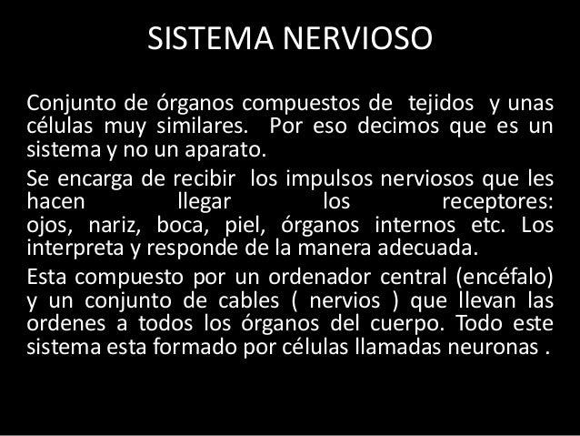 SISTEMA NERVIOSOConjunto de órganos compuestos de tejidos y unascélulas muy similares. Por eso decimos que es unsistema y ...