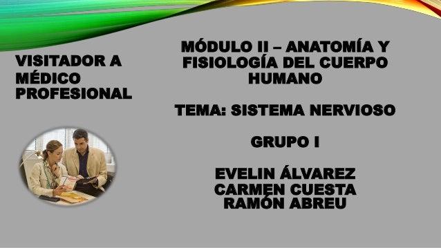 MÓDULO II – ANATOMÍA Y FISIOLOGÍA DEL CUERPO HUMANO TEMA: SISTEMA NERVIOSO GRUPO I EVELIN ÁLVAREZ CARMEN CUESTA RAMÓN ABRE...