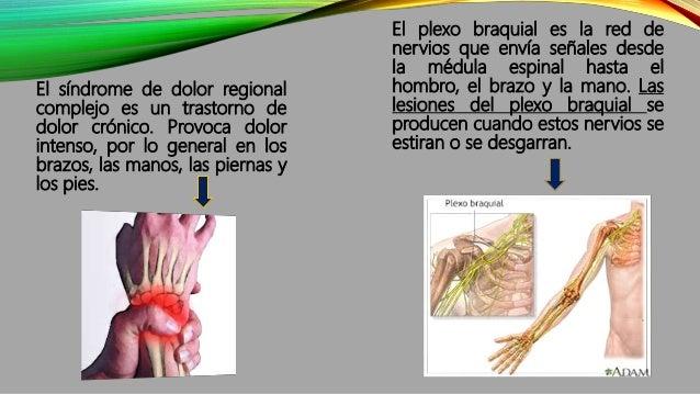SÍNTOMAS DE LAS ENFERMEDADES DEL SISTEMA NERVIOSO PERIFÉRICO  Síndrome de Guillain-Barré: debilidad muscular, anomalías e...
