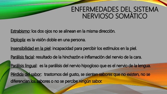 FUNCIÓN DEL SISTEMA NERVIOSO AUTÓNOMO O NEUROVEGETATIVO Su función es regular y coordinar los actos que son involuntarios,...