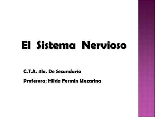 El Sistema Nervioso C.T.A. 4Io. De Secundaria Profesora: Hilda Fermín Mezarina