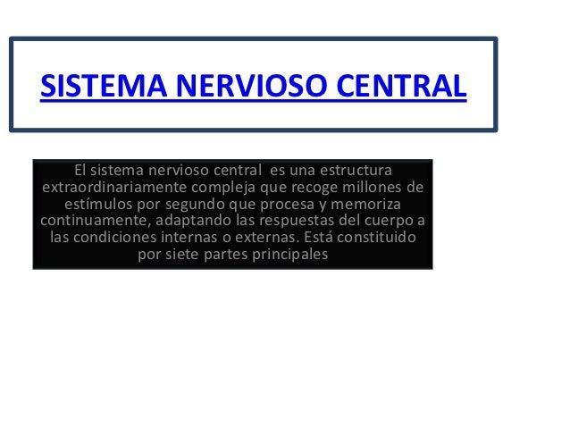 SISTEMA NERVIOSO CENTRAL     El sistema nervioso central es una estructuraextraordinariamente compleja que recoge millones...