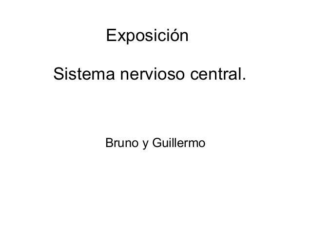 Exposici�n Sistema nervioso central. Bruno y Guillermo