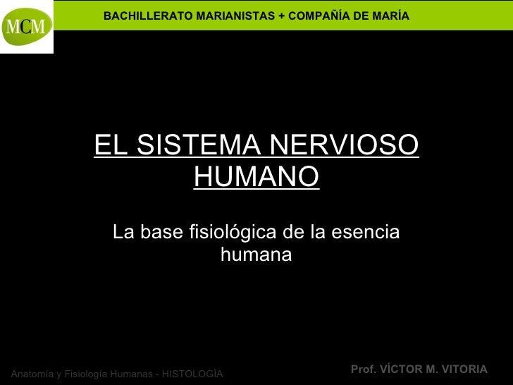 Anatomía y Fisiología Humanas - HISTOLOGÍA BACHILLERATO MARIANISTAS + COMPAÑÍA DE MARÍA Prof. VÍCTOR M. VITORIA EL SISTEMA...