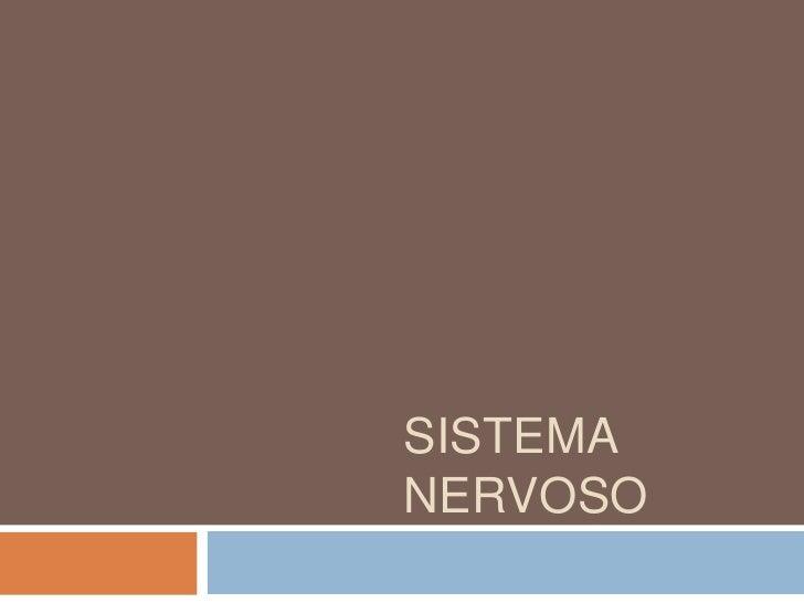 Sistema Nervoso<br />