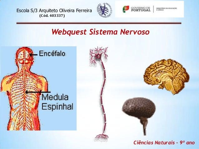 Escola S/3 Arquiteto Oliveira Ferreira           (Cód. 403337)                 Webquest Sistema Nervoso                   ...