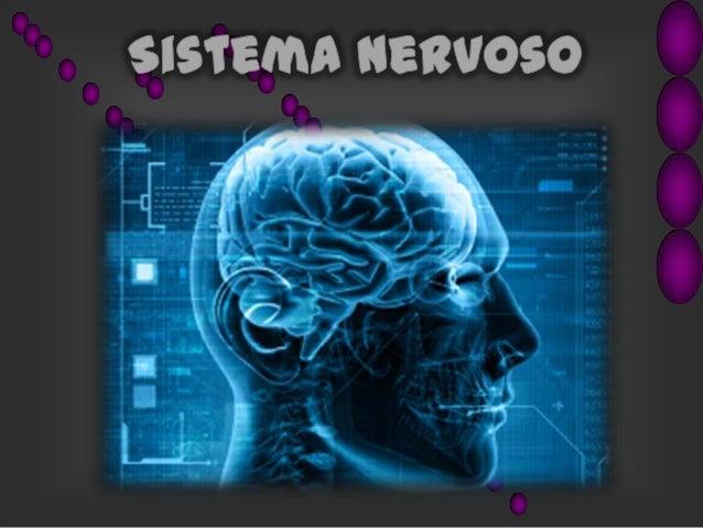 Sistema Nervoso • Qual a função do Sistema Nervoso ? A função do Sistema Nervoso (Juntamente ao Sistema Endócrino) é coord...