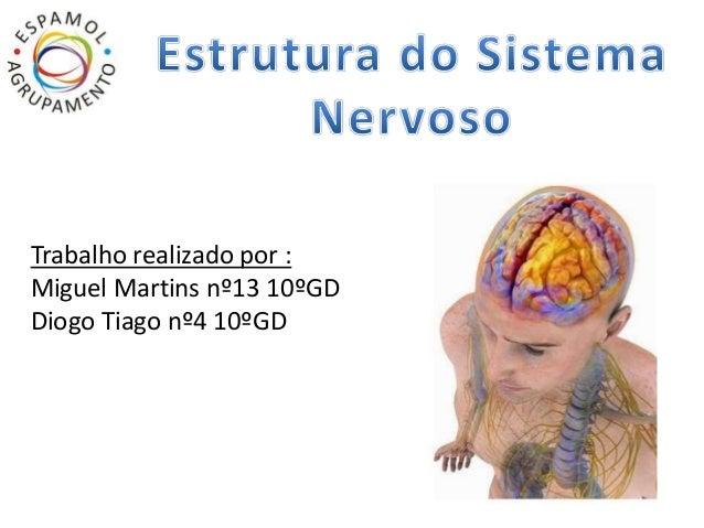 Trabalho realizado por :  Miguel Martins nº13 10ºGD  Diogo Tiago nº4 10ºGD