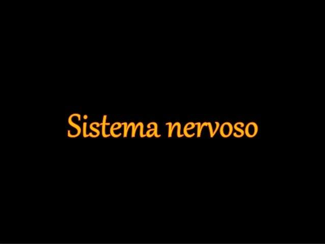 O que é o Sistema Nervoso?  • O sistema nervoso é o conjunto de  nervos, gânglios e centros nervosos  que asseguram o coma...