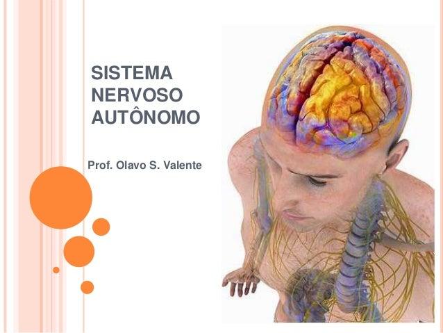 Prof. Olavo S. Valente SISTEMA NERVOSO AUTÔNOMO