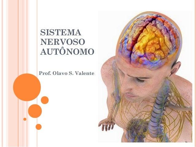 SISTEMA NERVOSO AUTÔNOMO Prof. Olavo S. Valente