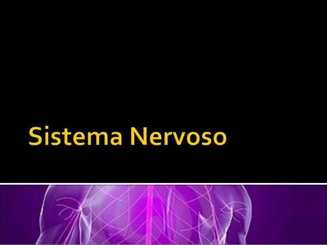 Esse comando é feito pelo Sistema Nervoso. O sistema nervoso é composto por duas partes principais:  O Sistema Nervoso Ce...