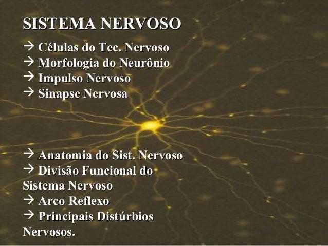 SISTEMA NERVOSO  Células do Tec. Nervoso  Morfologia do Neurônio  Impulso Nervoso  Sinapse Nervosa   Anatomia do Sist...