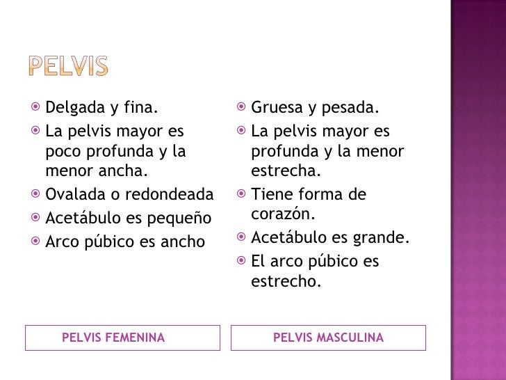 <ul><li>PELVIS FEMENINA </li></ul><ul><li>PELVIS MASCULINA </li></ul><ul><li>Delgada y fina. </li></ul><ul><li>La pelvis m...