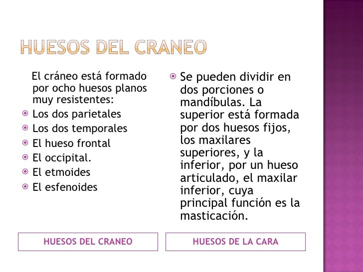 <ul><li>HUESOS DEL CRANEO </li></ul><ul><li>HUESOS DE LA CARA </li></ul><ul><li>El cráneo está formado por ocho huesos pla...