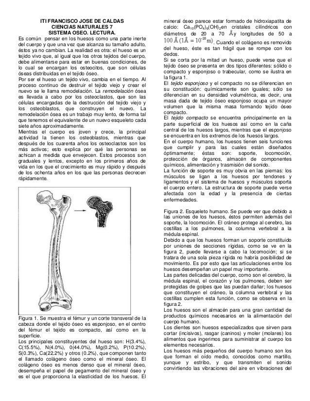 ITI FRANCISCO JOSE DE CALDAS CIENCIAS NATURALES 7 SISTEMA OSEO. LECTURA. Es común pensar en los huesos como una parte iner...