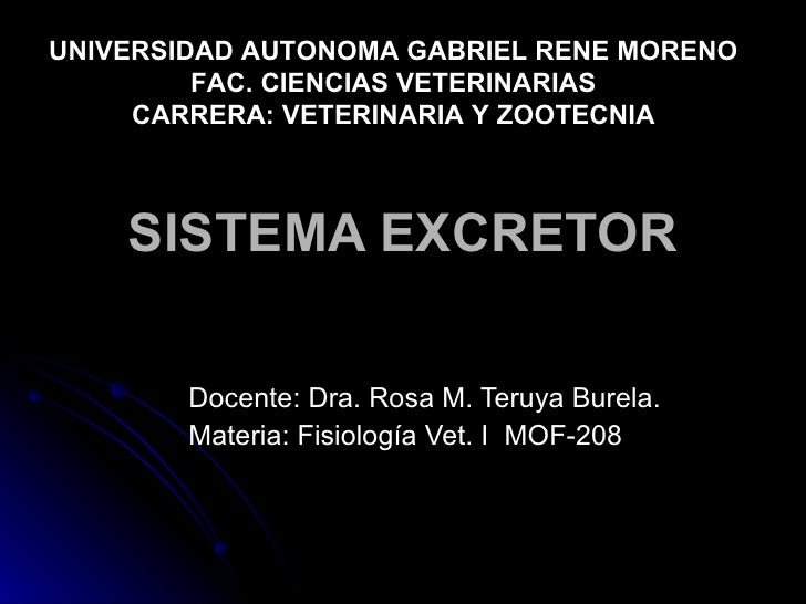 SISTEMA EXCRETOR Docente: Dra. Rosa M. Teruya Burela. Materia: Fisiología Vet. I  MOF-208  UNIVERSIDAD AUTONOMA GABRIEL RE...