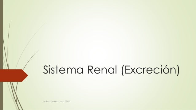 Sistema Renal (Excreción) Profesro Fernando Lugo Z 2015