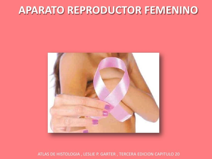 APARATO REPRODUCTOR FEMENINO  ATLAS DE HISTOLOGIA , LESLIE P. GARTER , TERCERA EDICION CAPITULO 20