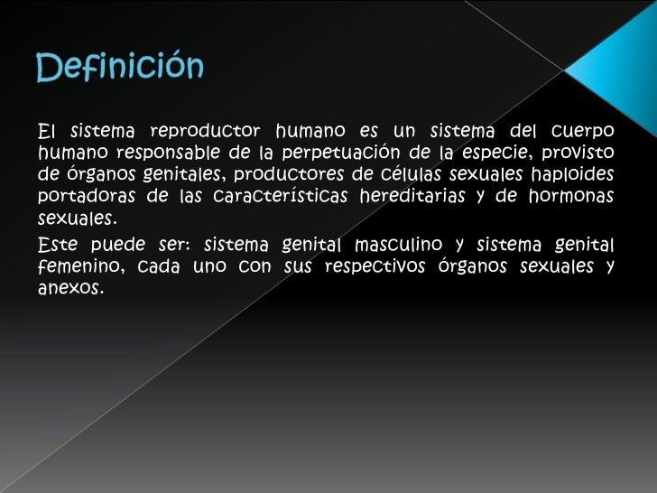 Sistema reproductor humano expo for Definicion de vivero