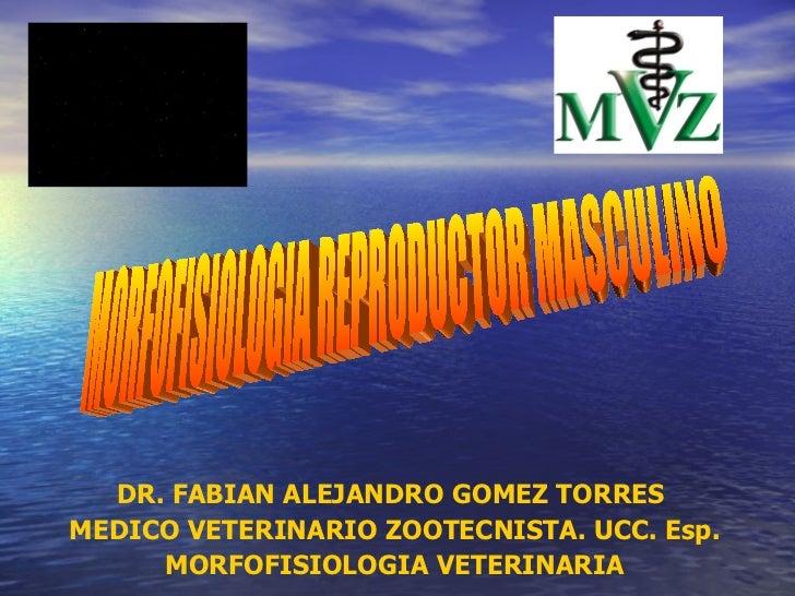 DR. FABIAN ALEJANDRO GOMEZ TORRES  MEDICO VETERINARIO ZOOTECNISTA. UCC. Esp. MORFOFISIOLOGIA VETERINARIA MORFOFISIOLOGIA R...