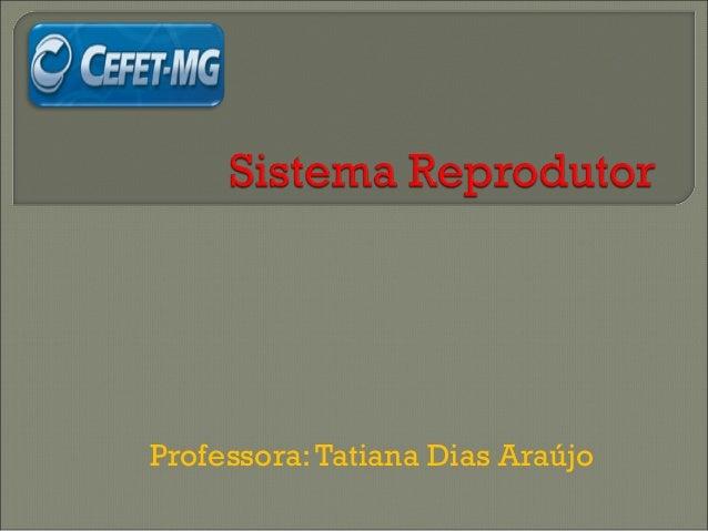 Professora: Tatiana Dias Araújo