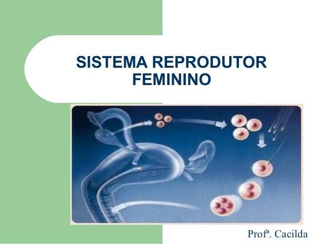 SISTEMA REPRODUTOR FEMININO Profª. Cacilda