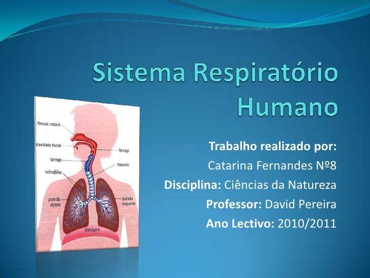 Sistema Respiratório Humano<br />Trabalho realizado por:<br />Catarina Fernandes Nº8<br />Disciplina: Ciências da Natureza...