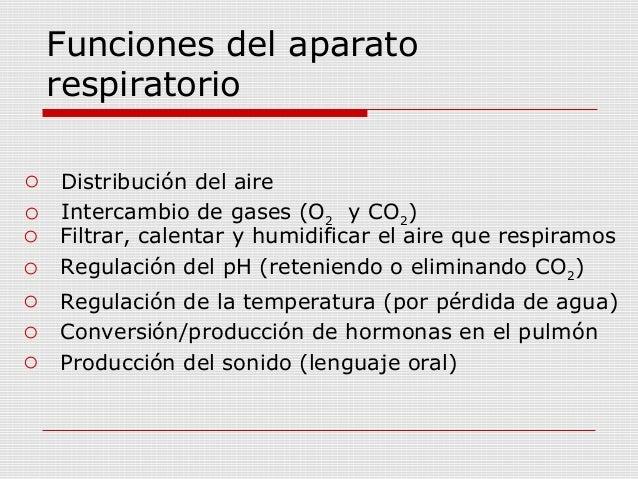 Sistema respiratorio - Humidificar el ambiente ...