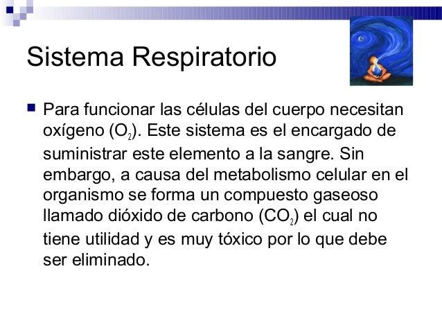 Sistema Respiratorio Para funcionar las células del cuerpo necesitanoxígeno (O2). Este sistema es el encargado desuminist...