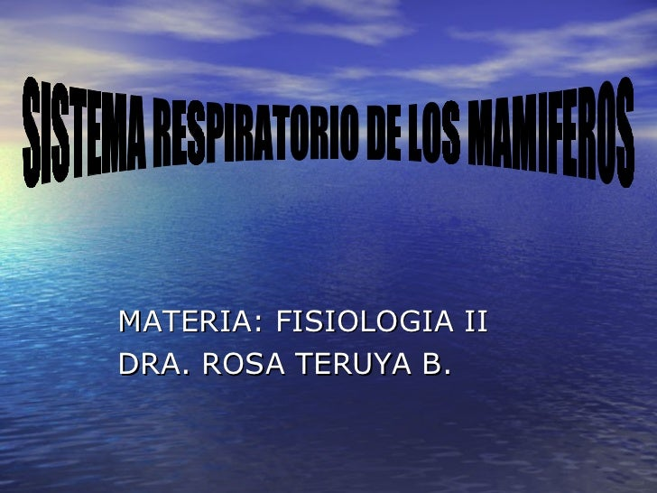 <ul><li>MATERIA: FISIOLOGIA II </li></ul><ul><li>DRA. ROSA TERUYA B. </li></ul>SISTEMA RESPIRATORIO DE LOS MAMIFEROS