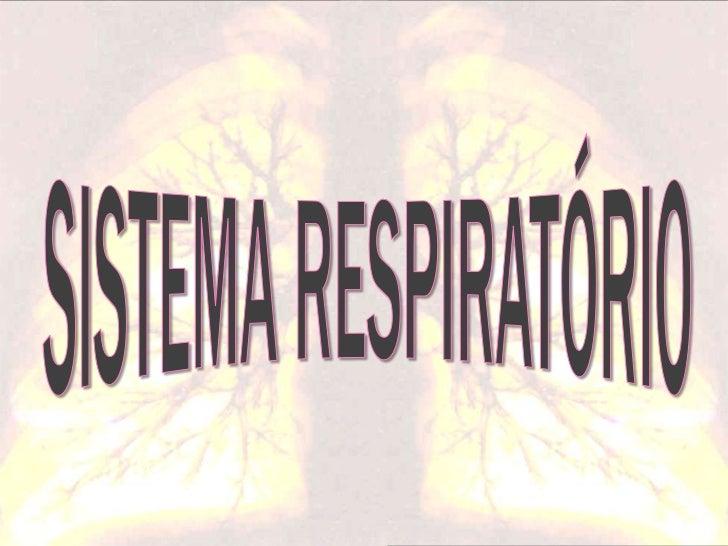 O Sistema Respiratório é        constituído por: Pulmões Vias respiratórias      - Fossas nasais      - Faringe      - L...