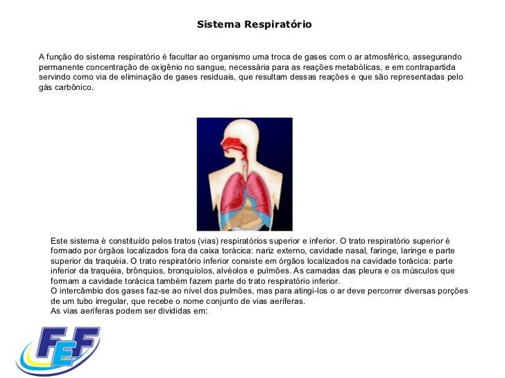 Sistema Respiratório A função do sistema respiratório é facultar ao organismo uma troca de gases com o ar atmosférico, ass...