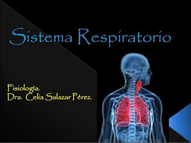 Sistema respiratorio anatomia y fisiologia
