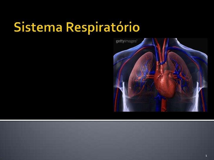 Sistema Respiratório<br />1<br />