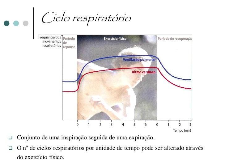 Hematose Pulmonar                                                        PO2= 104 mmHg       Trocas gasosas entre o      ...