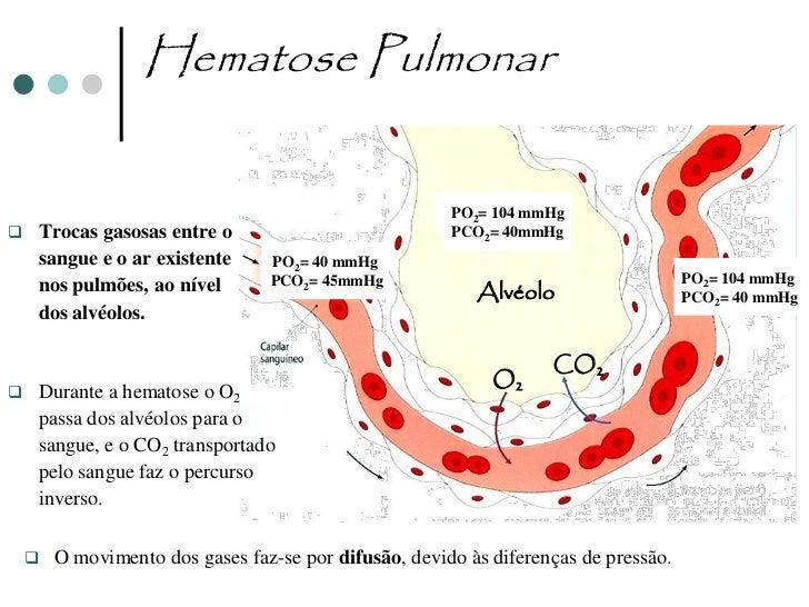 Hematose Celular                         PO2= 40 mmHg                         PCO2= 45mmHg                 Células        ...