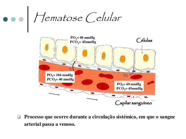 Asma   Caracterizada pelo estreitamento dos brônquios, o que provoca dificuldades na    entrada e saída de ar dos pulmões...
