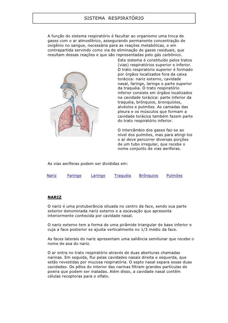 SISTEMA RESPIRATÓRIOA função do sistema respiratório é facultar ao organismo uma troca degases com o ar atmosférico, asseg...
