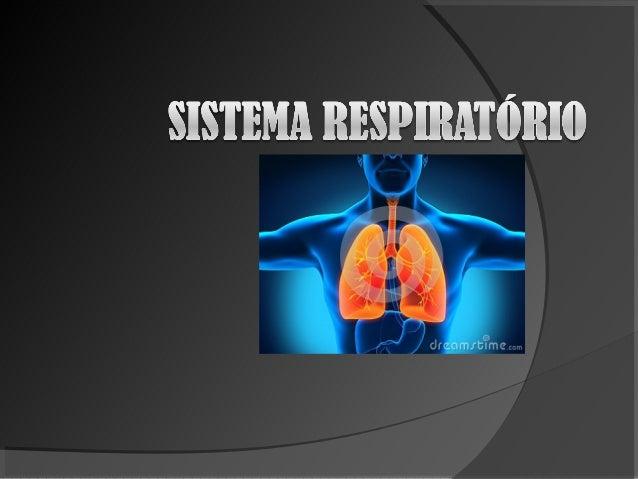 Qual a função do sistemarespiratório?!O sistema respiratóriotem a função de captaro oxigênio para queimara glicose e elimi...