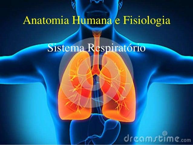 Anatomia Humana e Fisiologia Sistema Respiratório